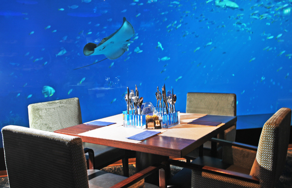Ocean Restaurant by Cat Cora at Marine Life Park at RWS